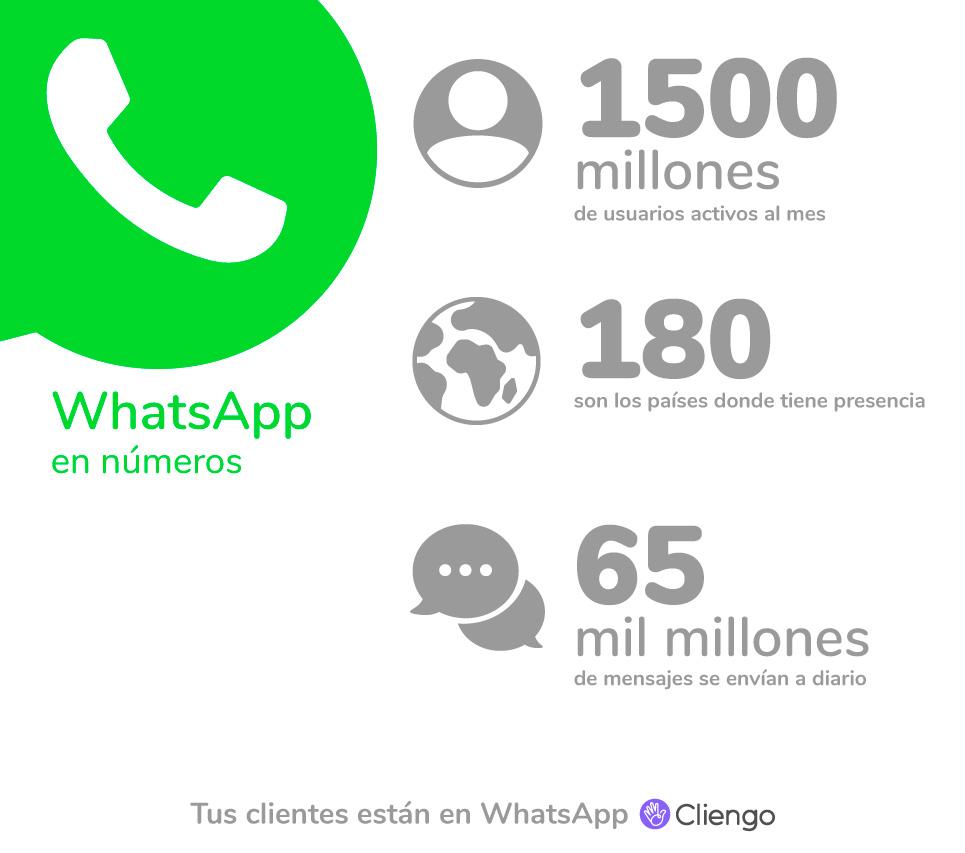WhatsApp en números